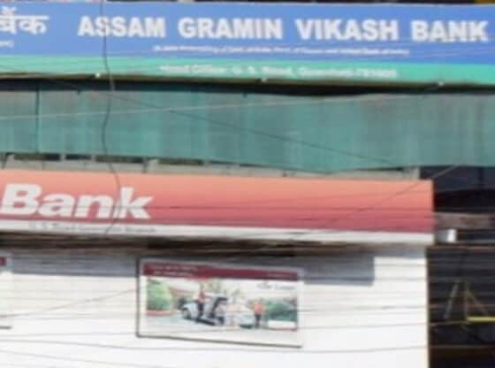assam gramin bikash bank head office