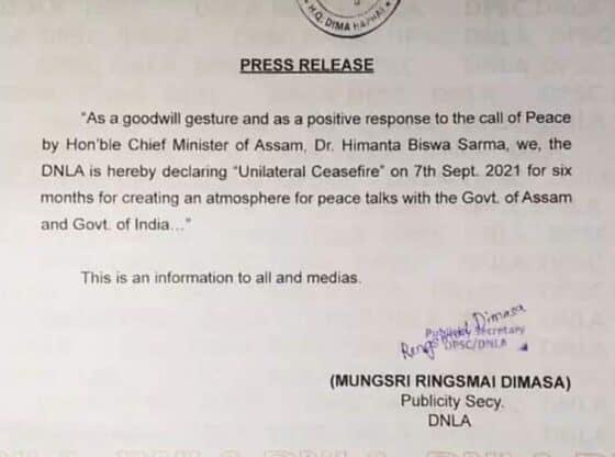 dnla ceasefire press release